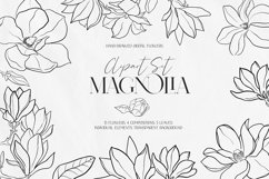 Magnolia Outline Set Product Image 1