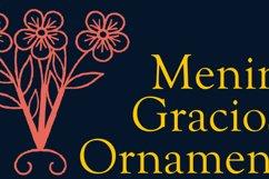 Menina Graciosa Ornaments Product Image 5