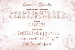 Camerline - Modern Calligraphy Font Product Image 6