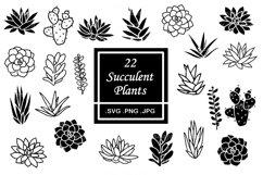 Succulent SVG Bundle - Cactus Clipart Product Image 1