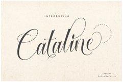 Cataline Script Product Image 1
