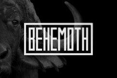 Behemoth Typeface Product Image 1