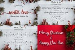 Best Seller Calligraphy Font Bundle Product Image 18