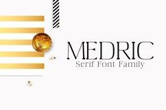 Medric Serif Font Family Product Image 1