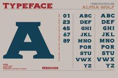 Alpha wolf - Serif font Product Image 2