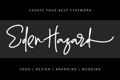 Enthusiast Behavior - Stylish Signature Font Product Image 3