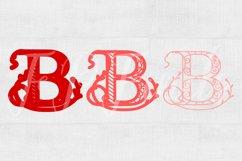 Letter B Laser Cut File SVG Floral Letter SVG Glowforge SVG Product Image 2