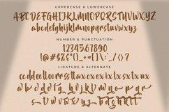 Akidan Hatory - Bold Script Font Product Image 14