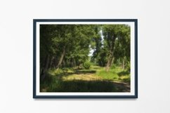Path in the forest - Wall Art - Digital Print - Home Decor Product Image 2