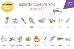 Watercolor spices vector set-1 Product Image 3