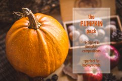 The PUMPKIN Pack Product Image 1