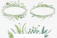 Watercolor herbs. Clipart collection Product Image 3