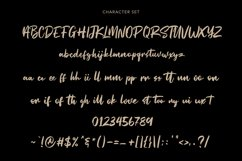 Straightfast Marker Script Font Product Image 5