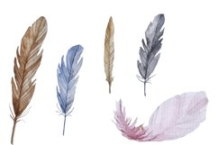Watercolor feathers clipart Product Image 5