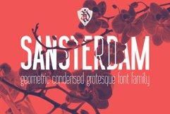 Sansterdam Bold and Thin Product Image 1
