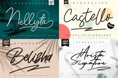 Best Seller - Mega Bundle 100 Fonts Product Image 20