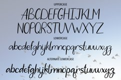 WHITE STORK. A HANDWRITTEN DUO FONT. Product Image 2