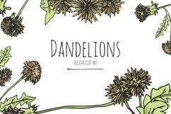 Dandelions - Digital Clip Art Product Image 1