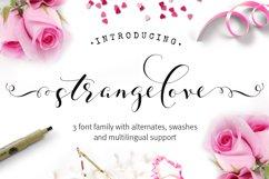 Strangelove Calligraphy Font - wedding font Product Image 1
