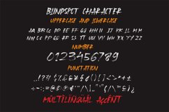 Blindspot Product Image 4