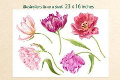 clipart flowers tulips Product Image 2