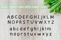 Orderly Handwritten Font Product Image 2