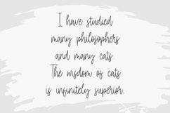 Daily Kitten Modern Monoline Handwritten Font Product Image 2