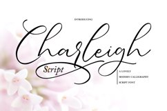 Charleigh   Modern Calligraphy Script Product Image 1