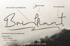 Brigham Signature Script Product Image 4