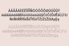 Perkin | Duo Font + Bonus Logo Product Image 6