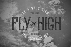 Bald Eagle Typeface Product Image 5