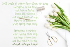 Spring Tulips Font - A Fun Hand Lettered Serif Font Product Image 4