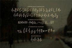 Panala - A Bold Signature Font Product Image 4