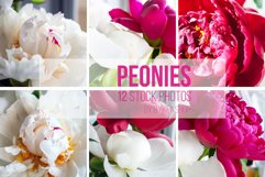 Bouquet of beautiful white and pink peonies Photo Bundle Product Image 2
