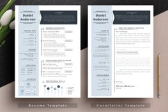 Professional Editable Resume Cv Template in Word Apple Pages Product Image 2