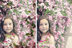20 PINK BLOSSOMS Photoshop Overlays Product Image 6