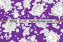 White Roses - 16 Digital Papers/Backgrounds Product Image 4