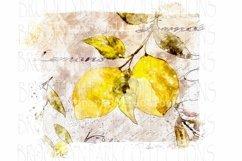 Watercolor Lemons, Spring Art Design, Sublimation PNG Product Image 1