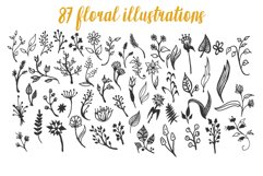 150 Hand-Drawn Floral Illustrations Product Image 5
