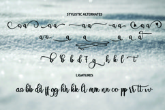 Breathaking script Font Product Image 4
