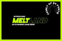 "Meltland Font Family - ""24 FONTS"" Product Image 1"