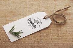Web Font Petula Product Image 5