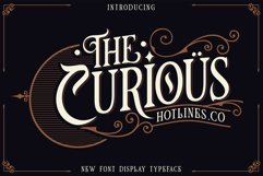 The Curious Product Image 1
