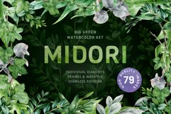 Midori Green Leaf Watercolor Set, Hand-Painted Collection Product Image 1