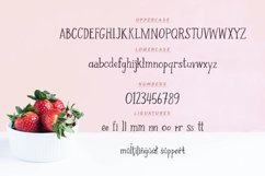Strawberry Farm | A Serif Font Product Image 4
