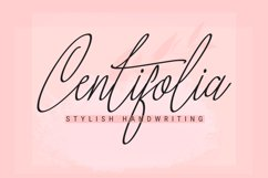 Centifolia is a lovely font Product Image 1