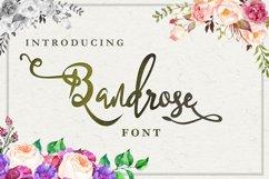 5 in 1 - font bundle vol 01 Product Image 5