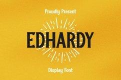 Web Font Edhardy Font Product Image 1