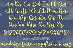 Gray Skies - handwritten script font Product Image 2