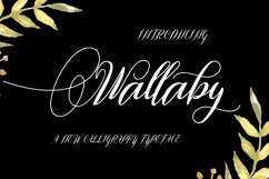 Wallaby Product Image 1